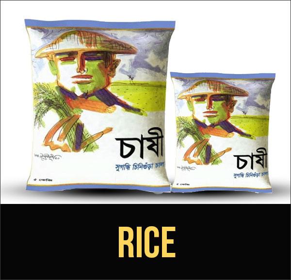 cat-rice-17-roll